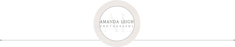 Amanda Leigh Photography | Virginia Family Photographer logo